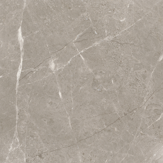 "24""x24"" Ritz Gray Polished Marble Tile 72-661"