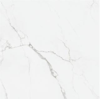 """Happy Floors - Statuario 24""""x24"""" Glossy Tile (Rectified Edges)"""
