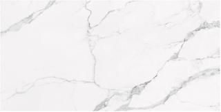 """Happy Floors - Statuario 24""""x48"""" Glossy Tile (Rectified Edges)"""