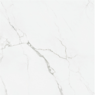 """Happy Floors - Statuario 30""""x30"""" Glossy Tile (Rectified Edges)"""