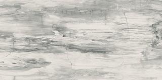 """Mariner - 12""""x24"""" Petrified Wood White Polished Porcelain Tile (Rectified Edges)"""