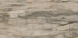 "Mariner - 12""x24"" Petrified Wood Natural Satin Porcelain Tile (Rectified Edges)"