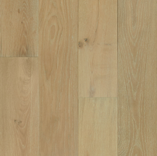 """Hartco - TimberBrushed Gold 1/2"""" thick x 7-1/2"""" wide Sandy Stroll White Oak Engineered Hardwood Flooring"""