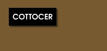Cottocer Tile